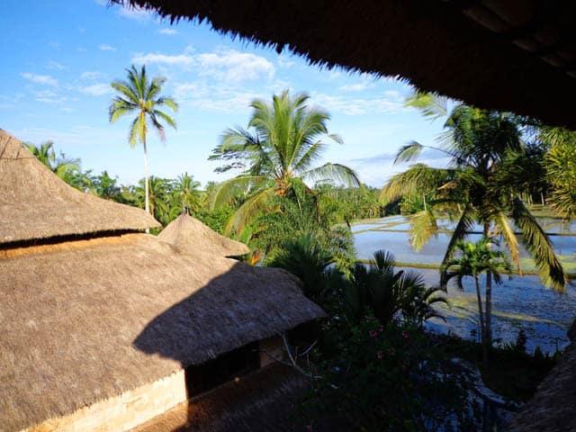 hotel bali ubud vue végétation