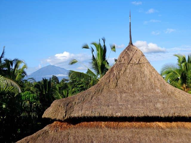 hotel bali ubud vue volcan