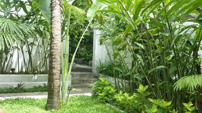 hotel blitar java jardin