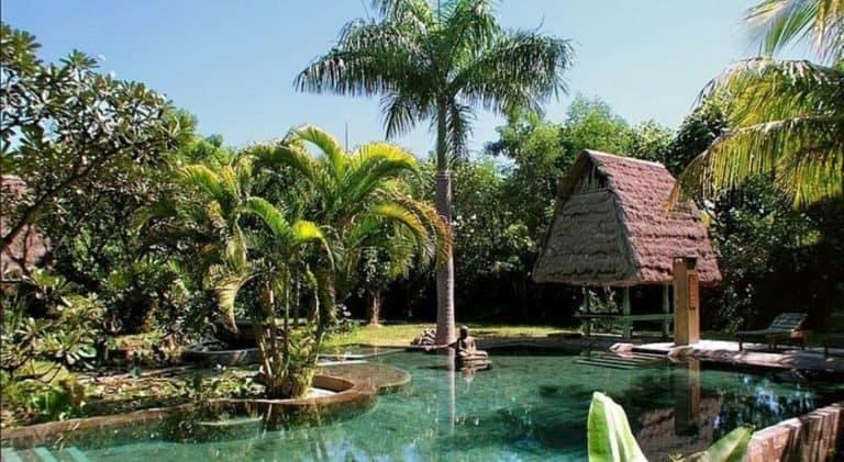 hotel gerokgak indonésie piscine