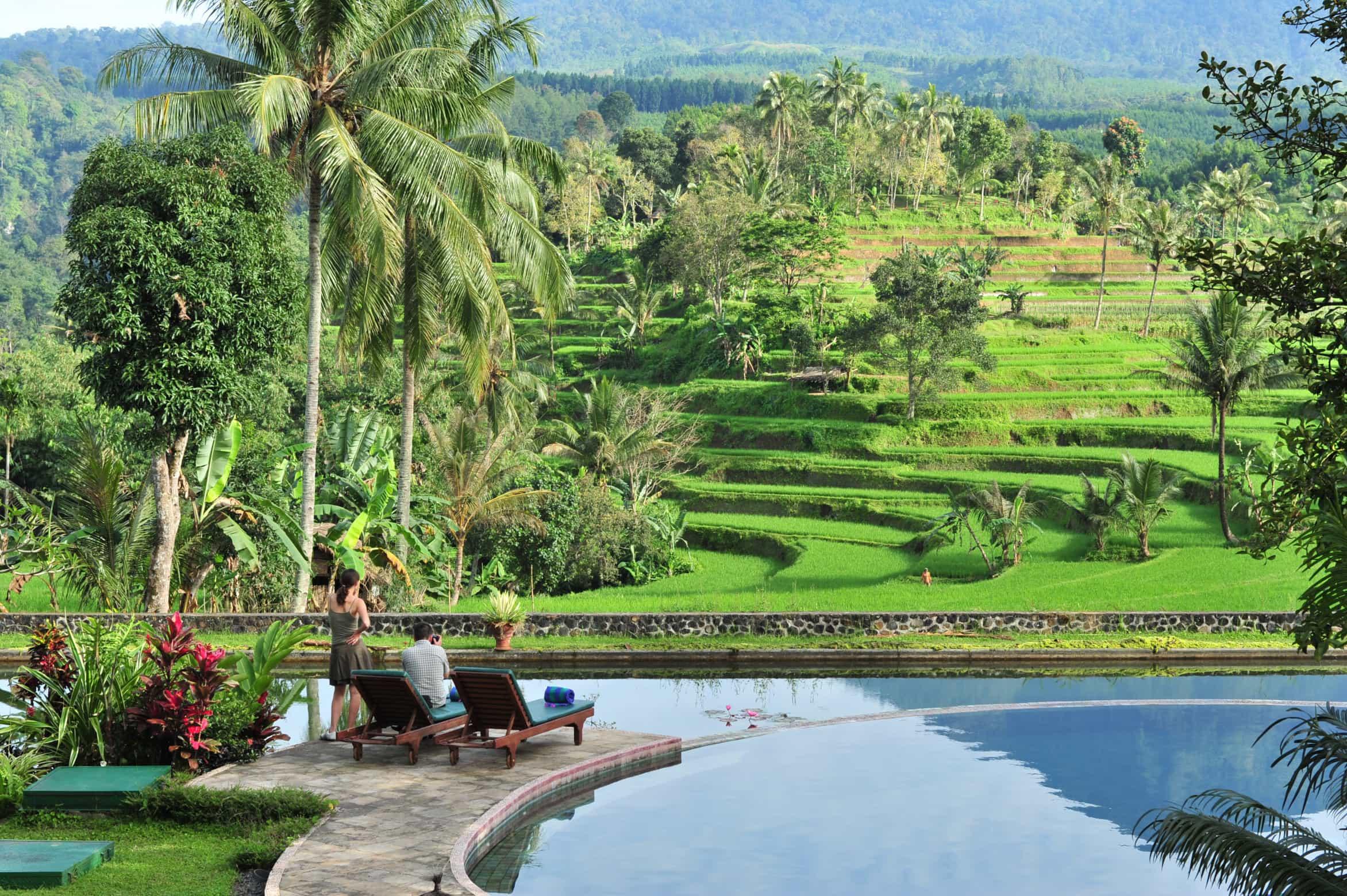 hotel ijen bantuwangi panorama