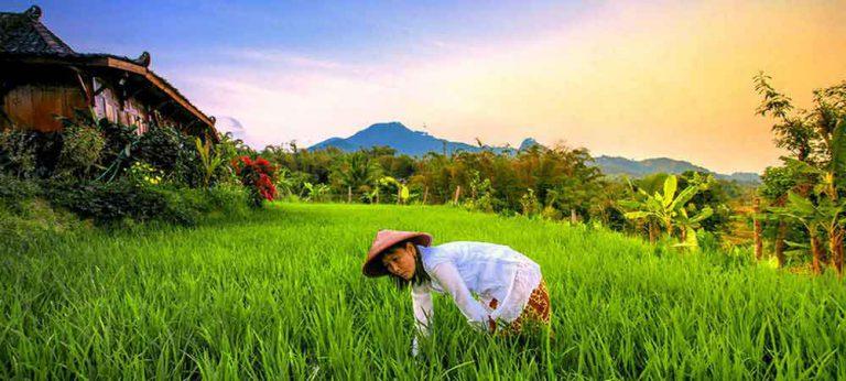 hotel indonésie java panorama