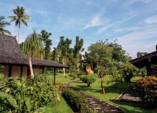 hotel Java Borobudur jardin