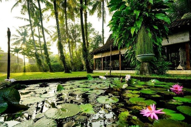 hotel java yogyakarta fleurs