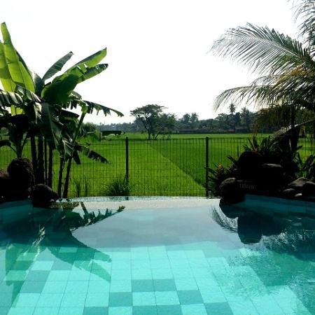hotel java yogyakarta piscine