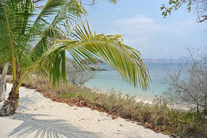 hotel komodo vue plage