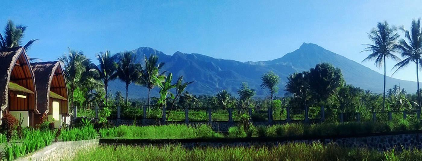 hotel Lombok Tetebatu vue
