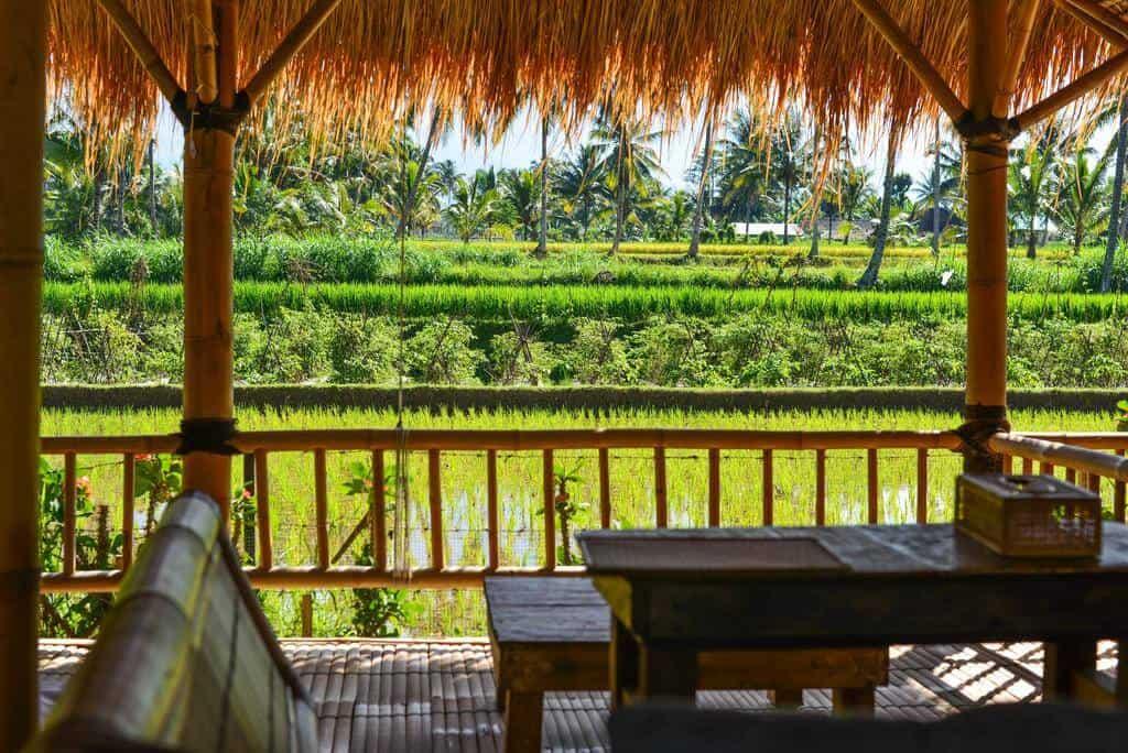 hotel lombok tetebatu vue riziere
