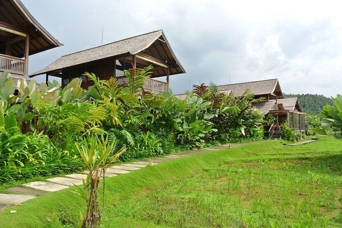 hotel nord de bali vue jardin