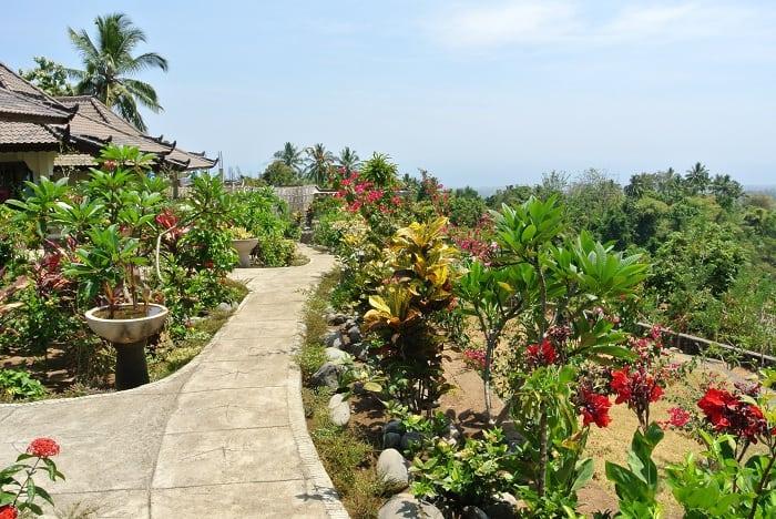 hotel senaru indonésie végétation