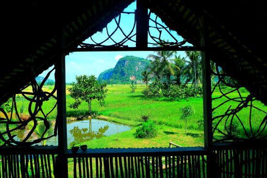 hotel Sumatra harau vue rizières