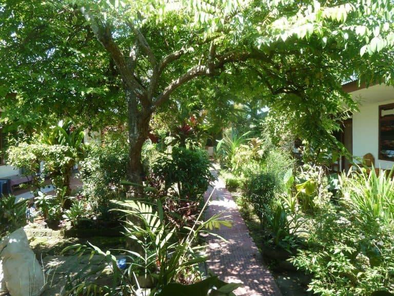 hotel Sumba Waikabubak jardin