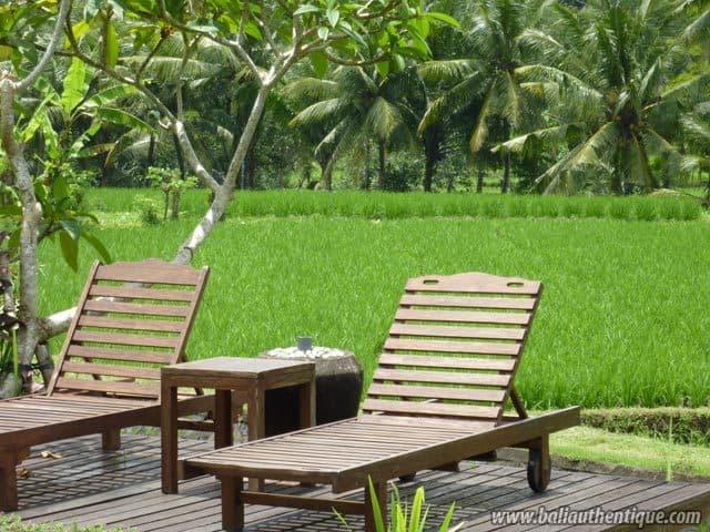 hotel tabanan bali piscine vue rizieres