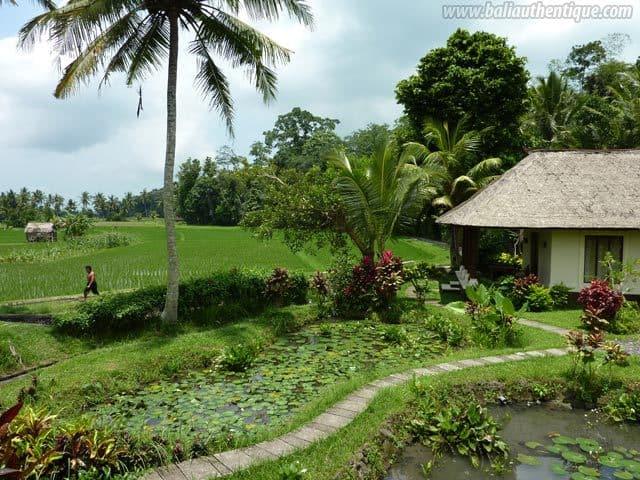 hotel tabanan bali vue rizières