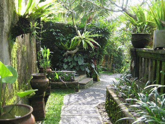 hotel Ubud Bali chemin