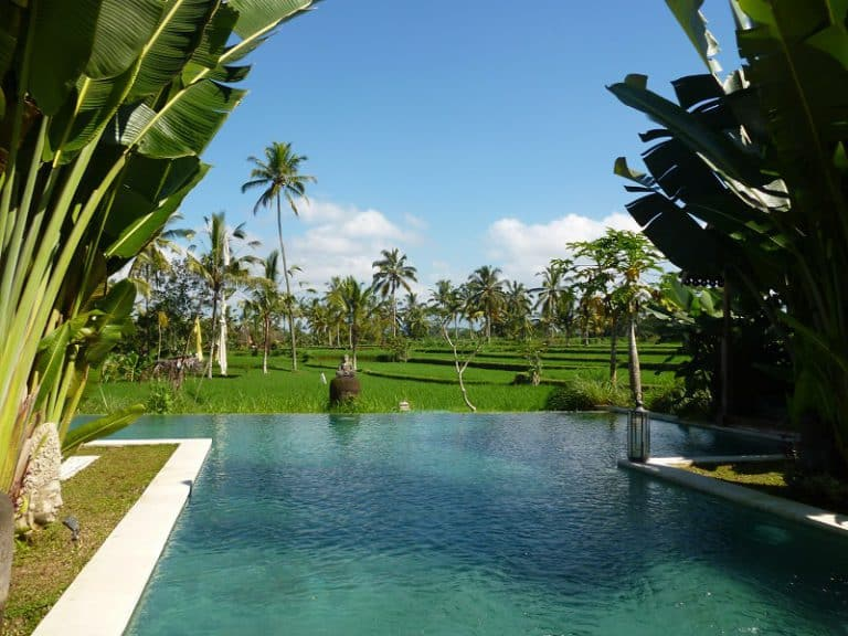 hotel avec piscine ubud
