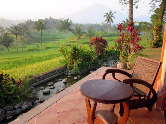 Java Ijen view terrasse