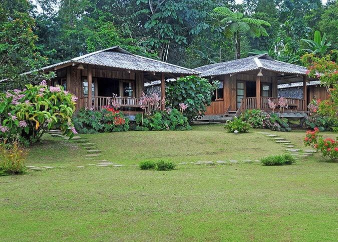 bungalow tomohon jardin