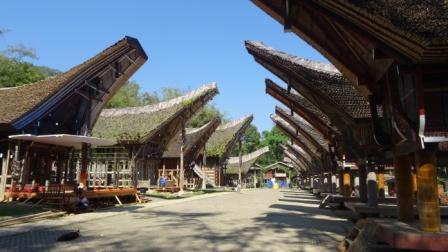 Tongkonan Toraja maison Sulawesi