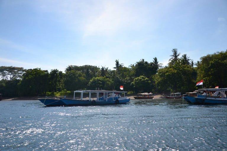 manjangan island snorkling bali