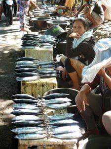 marché typique bali poissons