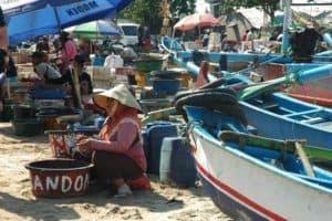 marché poissons bali