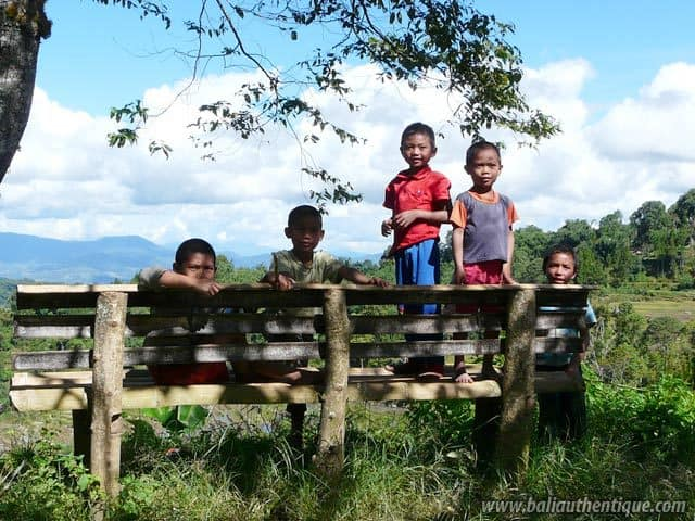 pays toraja sulawesi enfants photos