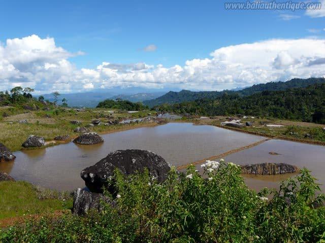 pays toraja sulawesi paysage montagnes indonesie