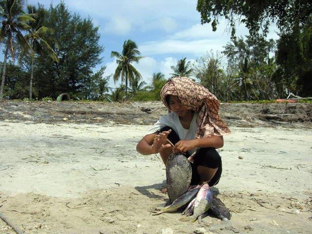 peche gili air ile lombok indonesie nature