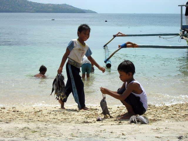 peche gili air ile lombok indonesie poissons