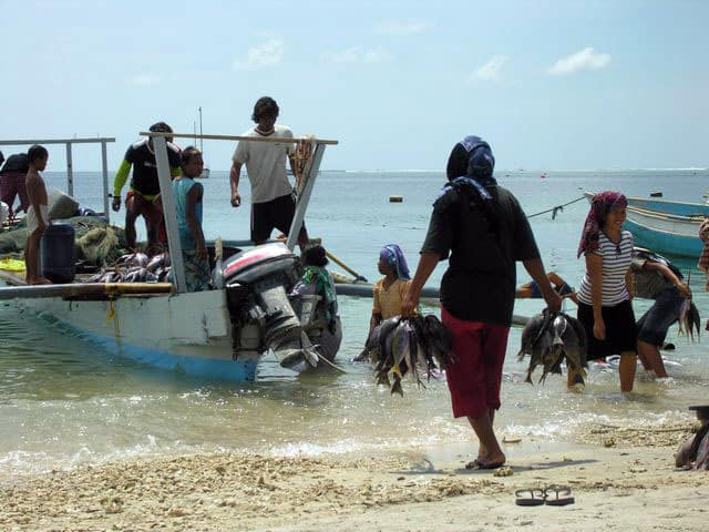peche gili air ile lombok indonesie retour peche