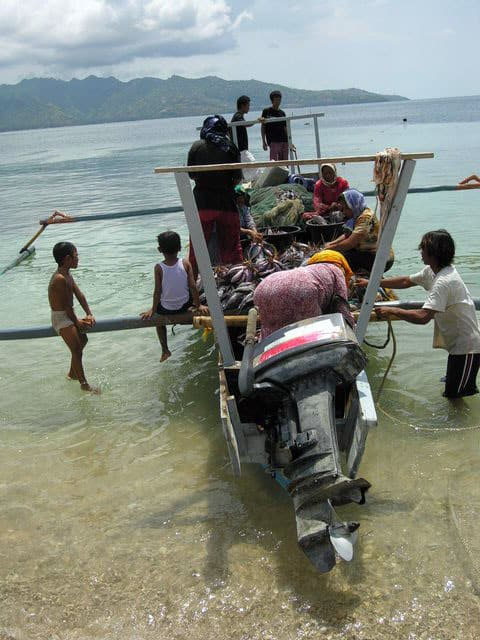 peche gili air ile lombok indonesie travail groupe