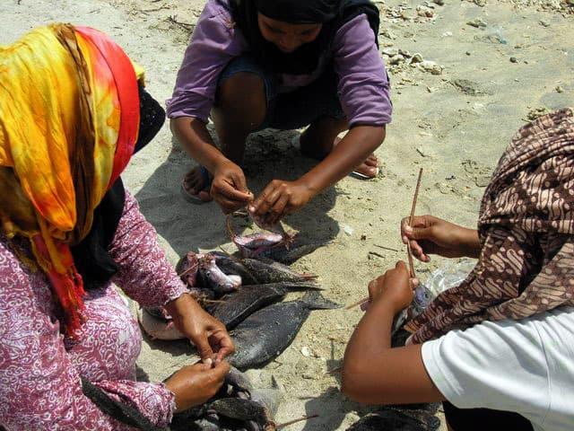 peche gili air ile lombok indonesie travailleurs poissons