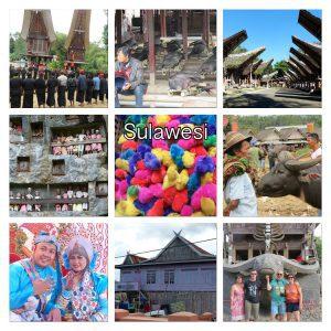 sulawesi découverte île indonésienne
