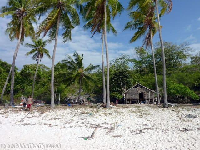 plage deserte bira palmier sable blanc