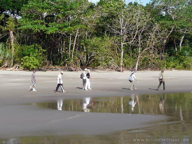 plage secrete java sud jember indonesie paysage