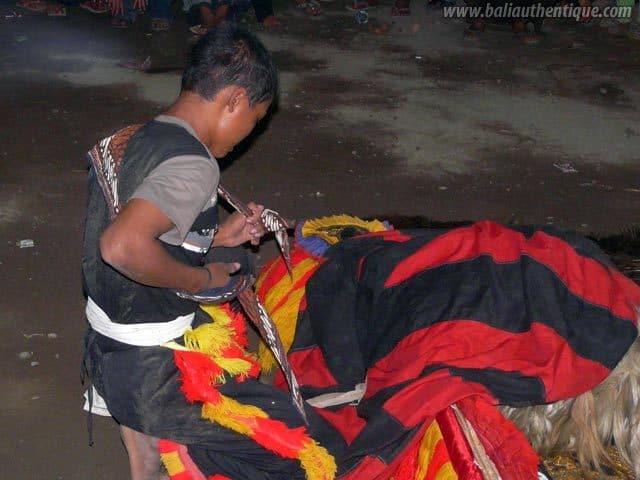 reog javanaise spectacle indonesie