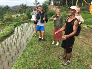 rizières bali indonesie voyage