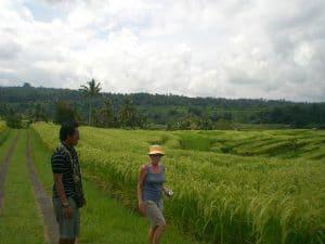 trek rizières bali voyage