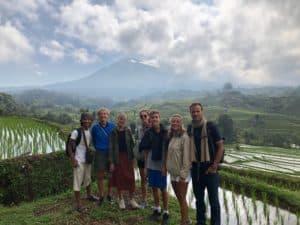 rizières volcans bali sejour