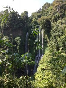 Sekumpul Bali