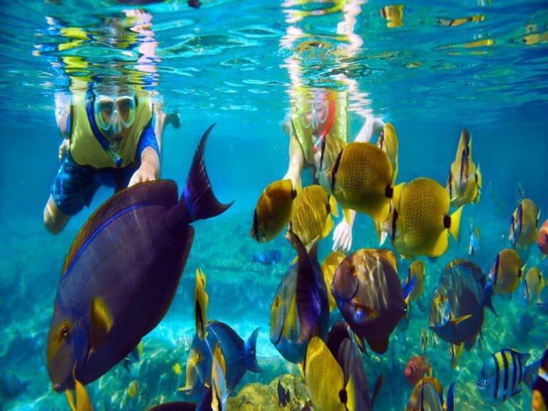 snorkeling Bali Indonesia