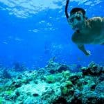 snorkling indonesie masque tuba fonds marins