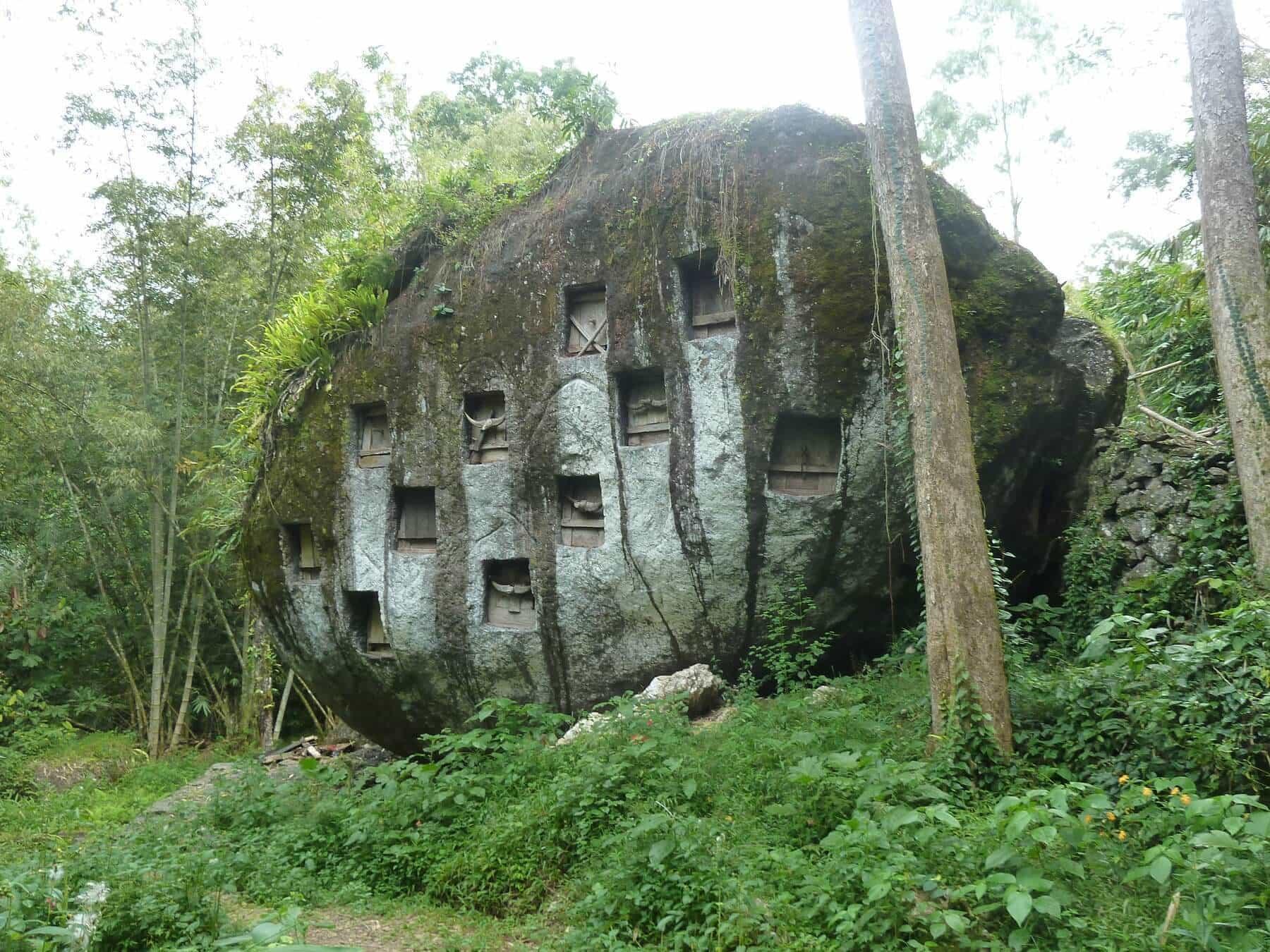 Sulawesi Toraja tombe roche
