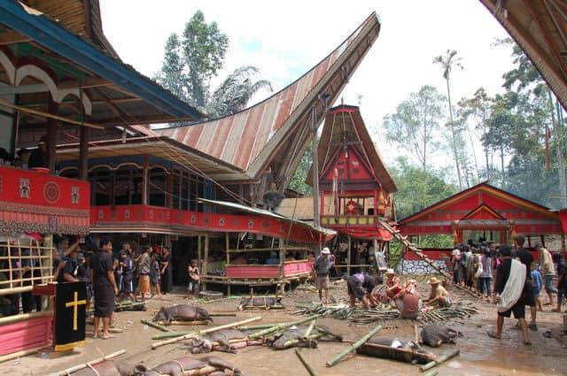 Sulawesi Toraja cérémonie traditionnelle
