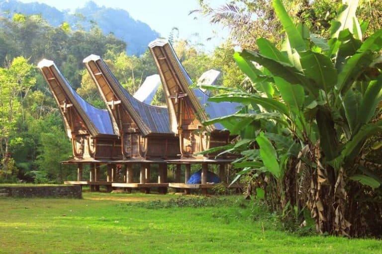 maison traditionnelle Sulawesi Toraja Indonésie