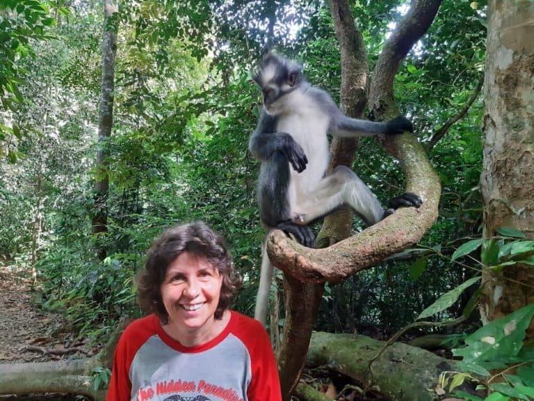 Sumatra-butik lawang-thomas