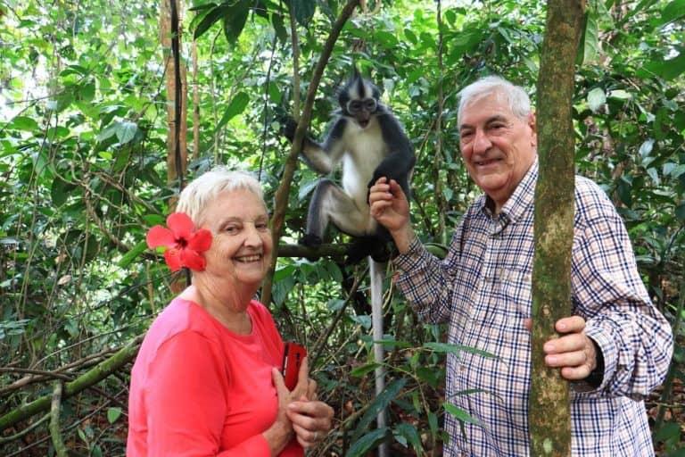 temoignage avis sumatra jungle singe