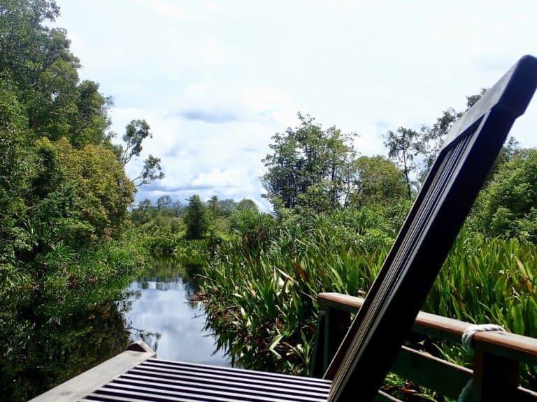 riviere sekonyer borneo