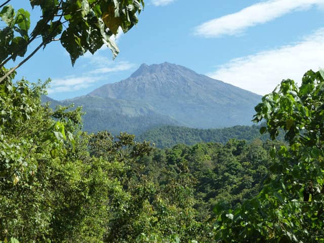 tetebatu region lombok volcan indonesie